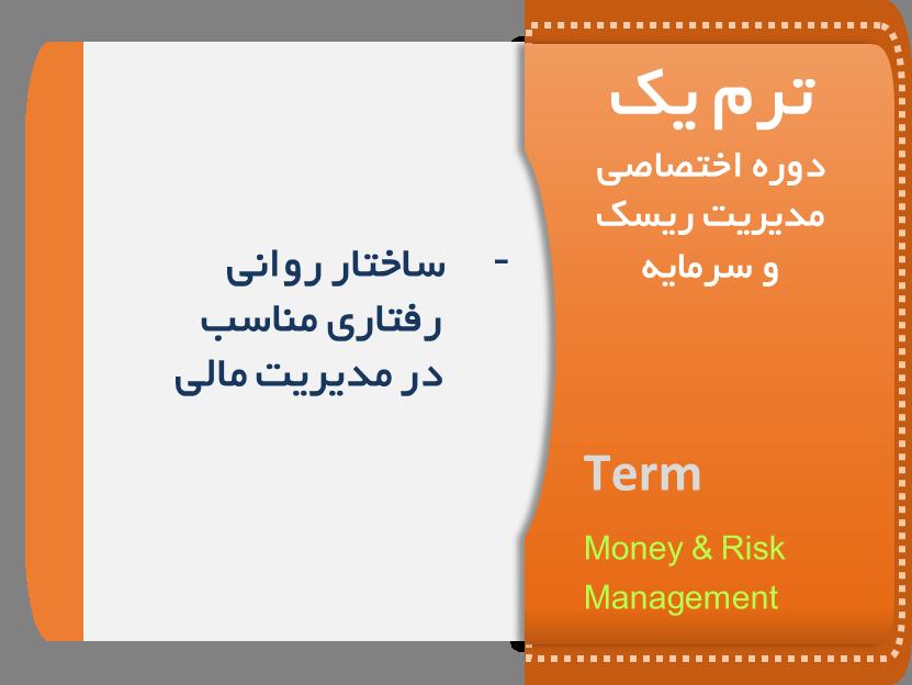 دوره مدیریت ریسک و سرمایه ترم یک