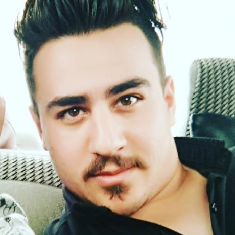 تصویر پروفایل Amirhossein lashgari